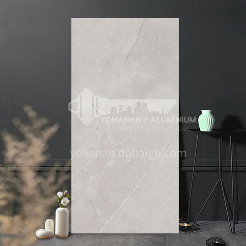 Simple modern bathroom kitchen toilet balcony tiles-SKL36507R 300*600mm