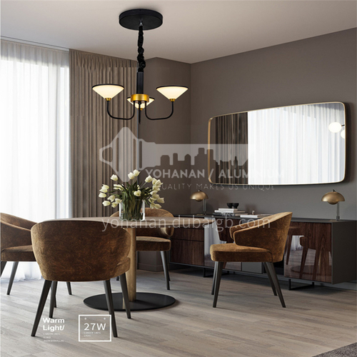 Modern and simple lighting, creative personality, living room dining room chandelier-NVC-BXDK1824