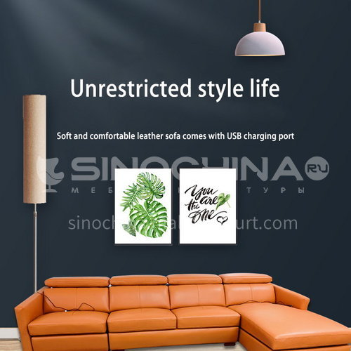 ZF-8001 Modern minimalist living room functional sofa with USB switch