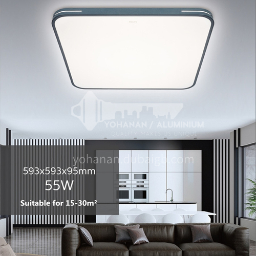 led living room light modern nordic light black and white rectangular ultra-thin ceiling light PHILIPS-GQ