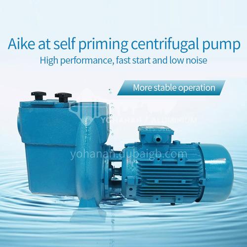 AT series full metal big pump massage iron pump swimming pool water pump swimming pool circulating filtered water DQ000657