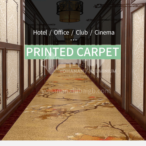 Corridor carpet series 6 for office cinema hotel project