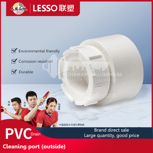 Cleanout (PVC-U Drainage Pipe Fittings) White