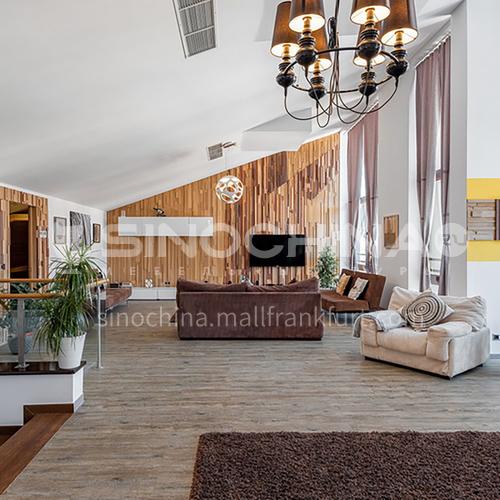 Houston villas   VA1005