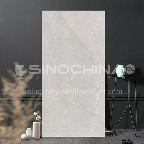 Bedroom and living room wall tiles-400x800mm WLK48007