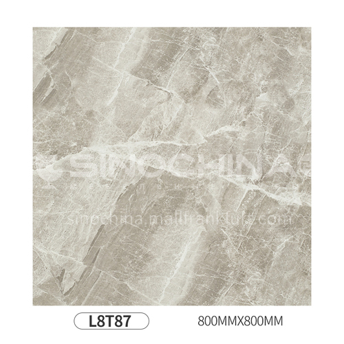 Simple and modern style whole body polished glazed floor tiles-L8T87 800mm*800mm