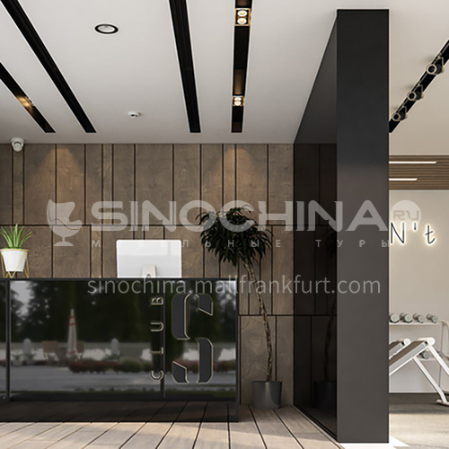 Fitness Room-Fitness Room Design   BG1010
