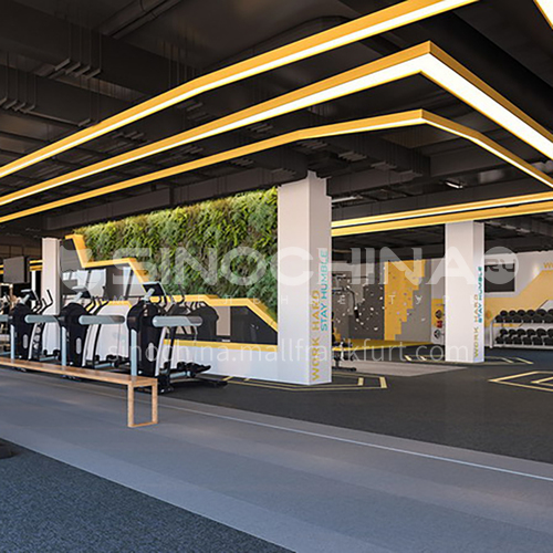 Fitness Room - United Arab Emirates Fitness Room Design   BG1013