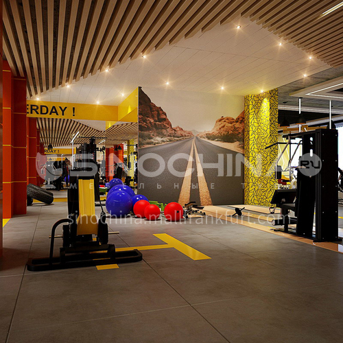 Fitness Room-Fitness Room Design   BG1014