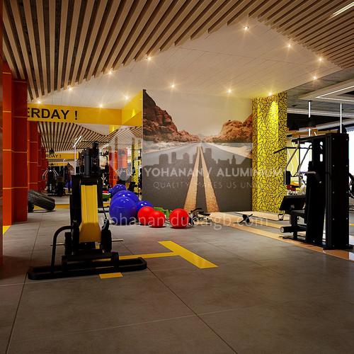 Fitness Room-Fitness Room Design   BG1014