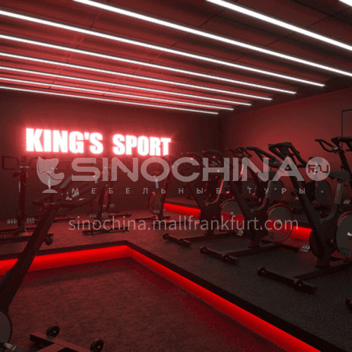 Fitness Room - KINGS SPORT Fitness Room Design   BG1020