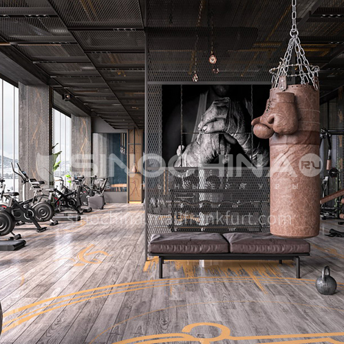 Fitness Room - Dana Fitness Design BG1001