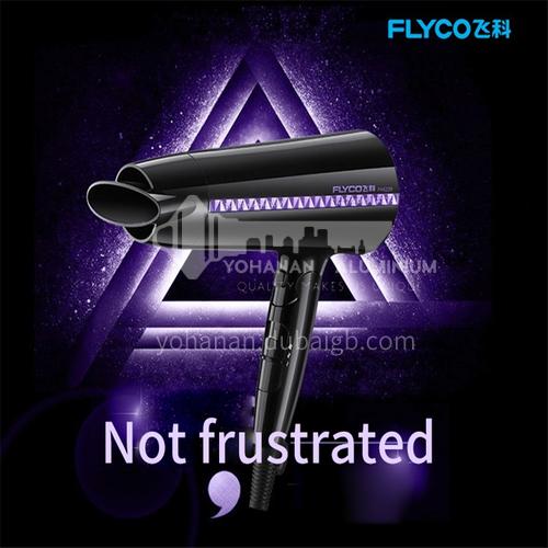 FLYCO hair dryer household hair dryer 2000W high power water moisturizing negative ion foldable hair dryer DQ000024