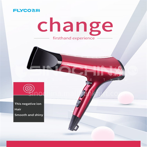 FLYCO/Flyco hair dryer household high-power hair stylist special negative ion hair care dormitory with student hair dryer 2200W DQ000026