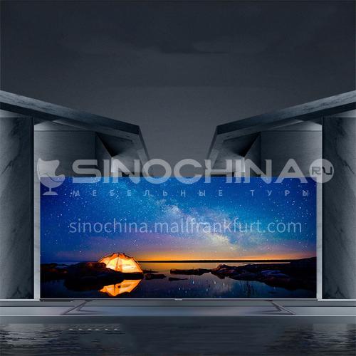 Hisense 4K HD Smart Flat Panel LCD AI Full Screen TV 55-inch DQ000410