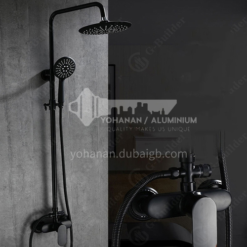 Black color two functions shower head LW-BS