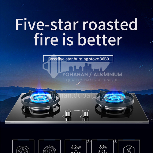 Robam DQ009080 gas stove double stove gas stove fierce fire household natural gas liquefaction stove